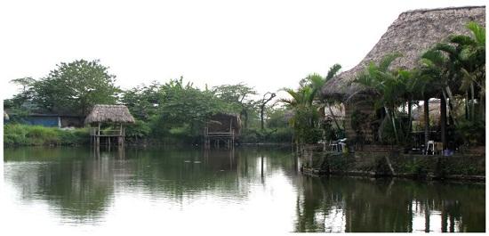 Hồ câu Phi Trường