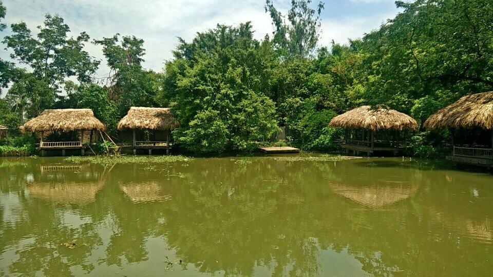 Hồ câu cá hà Nội