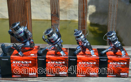 máy câu cá đứng shimano Sienna 4000FD