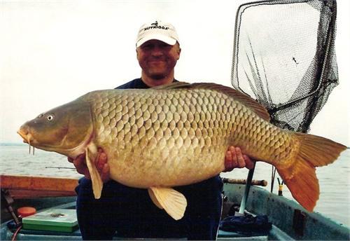 Mồi câu cá chép