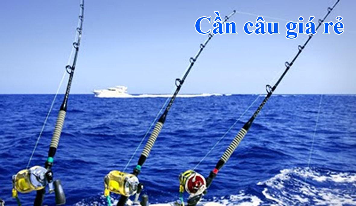 Hướng dẫn kỹ thuật câu nhấp bằng mồi cá chết (Phần 2 ...